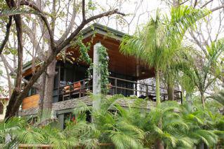 treehouse2f